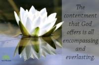 contentment.newlife