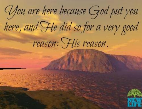 Seeking God's Plans