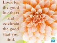 look-for-good.newlife