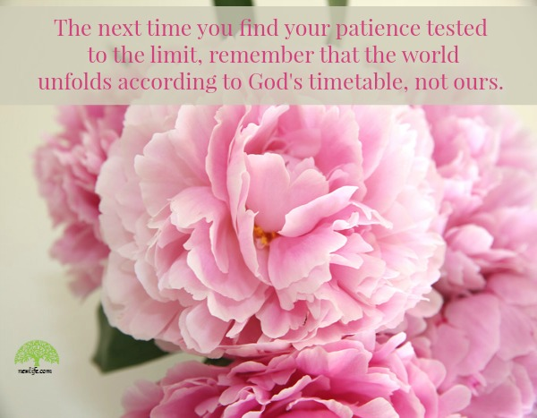patience.newlife