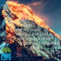 psalm-73-26