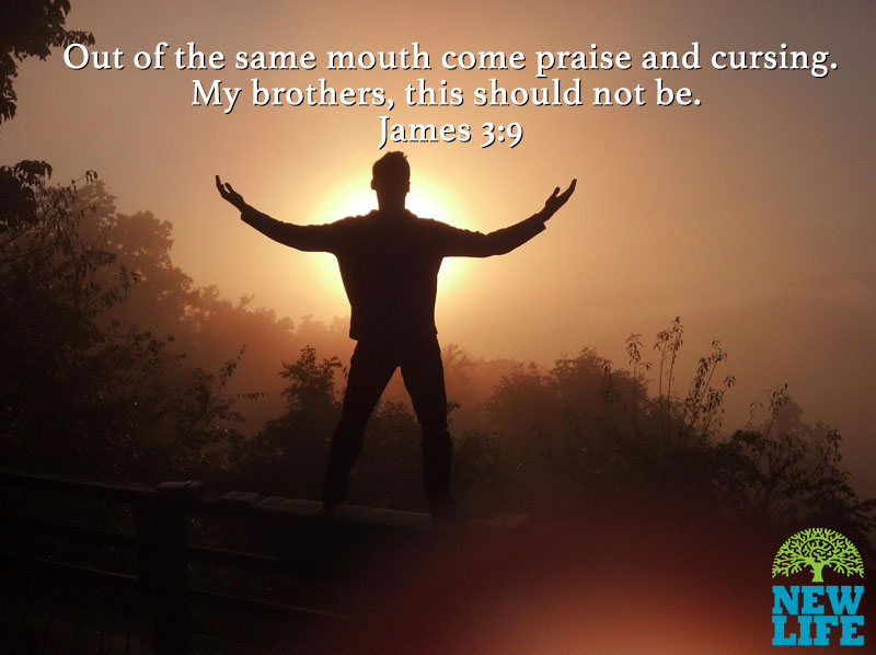 Image result for image of James 3:9