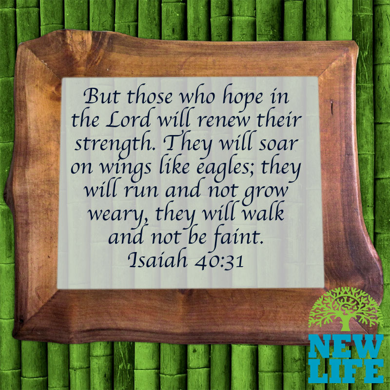 Those Who Wait Upon the Lord