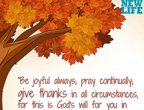 Giving Thanks – Day 6