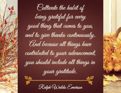 Giving Thanks – Day 21