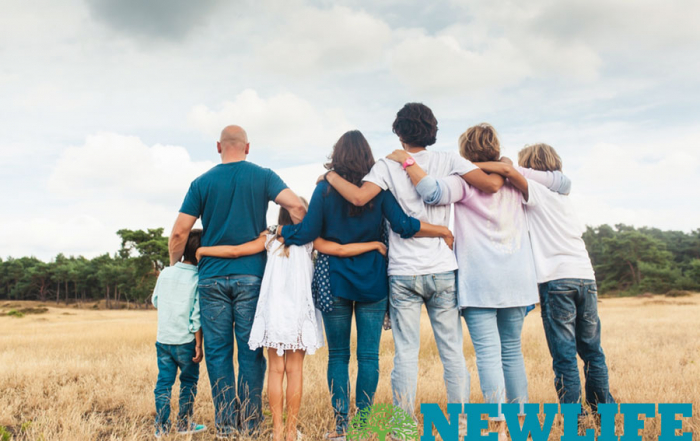 The Ups and Downs of a Blended Family