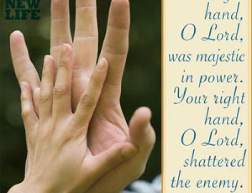 Bigger Hands