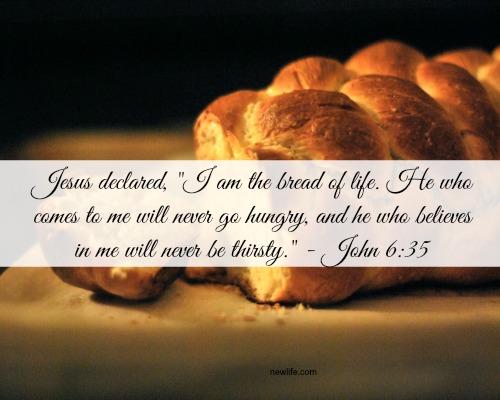 breadoflife.newlife