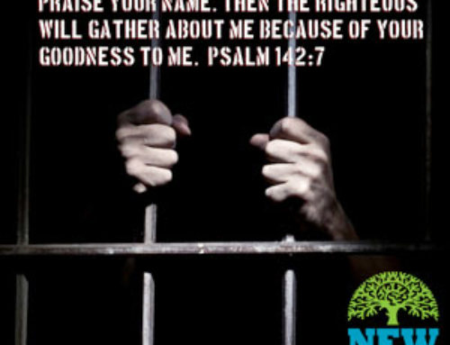 Whom God sets Free is Free Indeed